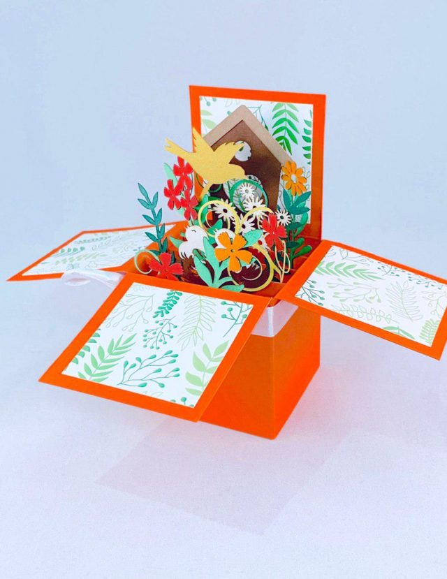 Orange 3D Greeting Box