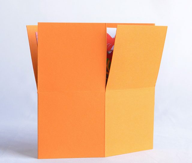 Orange 3D Box with Flowers