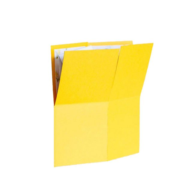 Yellow 3D Greeting Box with Flowers